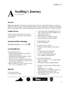 A Seedling's Journey Lesson Plan