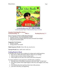 At The Park Lesson Plan