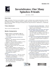 Invertrebrates: Our Many Spineless Friends Lesson Plan
