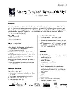 Binary, Bits and Bytes - Oh My! Lesson Plan