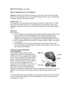 Physical Adaptations in Ice Age Mammals Lesson Plan