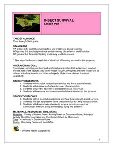 Insect Survival Lesson Plan