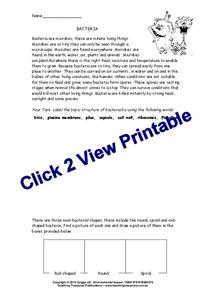Bacteria Worksheet