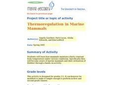 Thermoregulation in Marine Mammals Lesson Plan