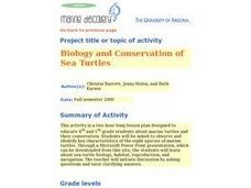 Biology and Conservation of Sea Turtles Lesson Plan