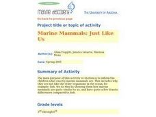 Marine Mammals: Just Like Us Lesson Plan