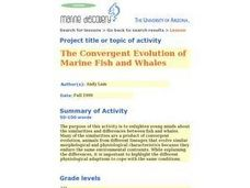 The Convergent Evolution of Marine Fish and Whales Lesson Plan
