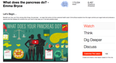 What Does the Pancreas Do? Video