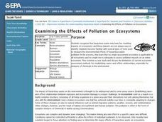 Examining the Effects of Pollution on Ecosystems Lesson Plan