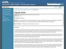 Zigzag Seeds Lesson Plan