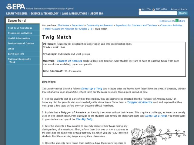 Twig Match Lesson Plan