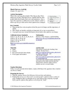 Shark Surveys Activity Lesson Plan