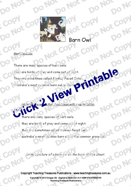 Barn Owl Worksheet