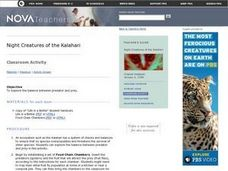 Night Creatures of the Kalahari Lesson Plan