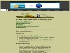 N.A.M.I.B. (Namib Animal Mobile of Interesting Birds) Lesson Plan
