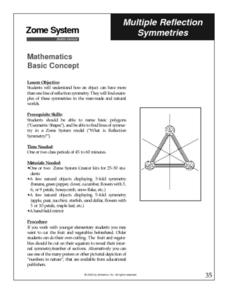 Multiple Reflection Symmetries Lesson Plan