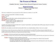 Process of Mitosis Lesson Plan