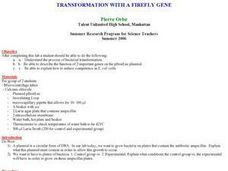 Transformation With A Firefly Gene Lesson Plan