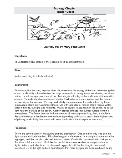 Primary Producers Lesson Plan