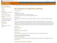 Overview of Cooperative Learning Lesson Plan