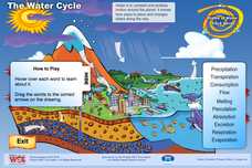 The Water Cycle Interactive