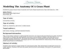 Modeling The Anatomy Of A Grass Plant Lesson Plan
