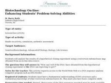 Enhancing Students' Problem-Solving Abilities Lesson Plan