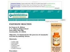 Enzymatic Reaction Lesson Plan
