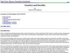 Biology: Genetics and Heredity Lesson Plan