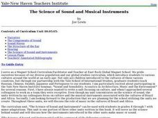 The Science of Sound and Musical Instruments Lesson Plan
