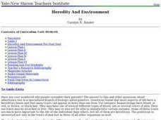 Heredity And Environment Lesson Plan