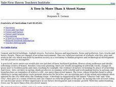 A Tree Is More than a Street Name Lesson Plan