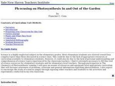 Ph-ocusing on Photosynthesis In and Out of the Garden Lesson Plan