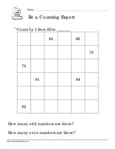 Be a Counting Expert Worksheet