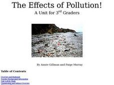 The Effects of Pollution! Lesson Plan