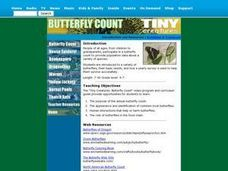 Butterfly Count Lesson Plan