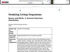 Beans and Birds: A Natural Selection Simulation Lesson Plan