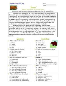 Bears Worksheet