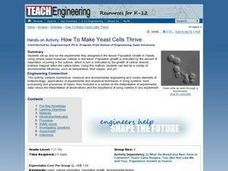 How To Make Yeast Cells Thrive Lesson Plan
