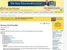 Discover a Pond Food Web Lesson Plan