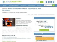 Fairly Fundamental Facts About Forces and Structures Lesson Plan