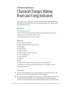 Chemical Changes Making Foam and Using Indicators Lesson Plan