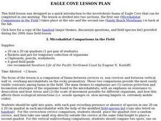 Eagle Cove: Invertebrate Lab Lesson Plan