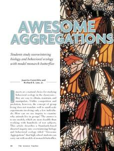 Awesome Aggregations Lesson Plan