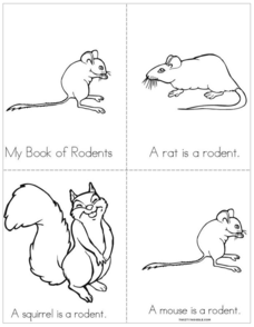 My Book of Rodents Printables & Template