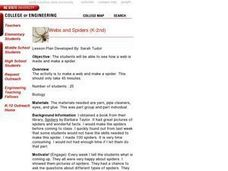 Webs and Spiders Lesson Plan