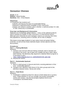 Consumer Choices Lesson Plan
