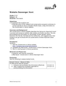 Website Scavenger Hunt Lesson Plan