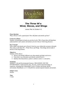 The Three W's: Wind, Waves, and Wings Lesson Plan