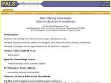 Identifying Creatures Lesson Plan